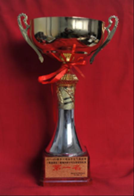 2015-2016赛季中国高中女子篮球赛(陕西赛区)暨陕西省中学生篮球锦标赛第一名